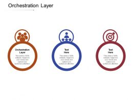 Orchestration Layer Ppt Powerpoint Presentation File Example Introduction Cpb