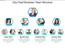 Org Chart Business Team Structure