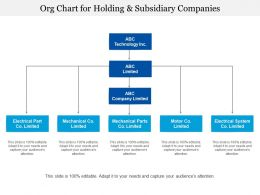 Org Chart For Holding And Subsidiary Companies