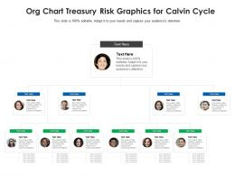 Org Chart Treasury Risk Graphics For Calvin Cycle Infographic Template