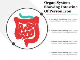Organ System Showing Intestine Of Person Icon