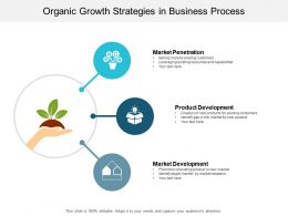 Organic Growth Strategies In Business Process