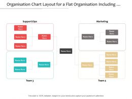 organisation_chart_layout_for_a_flat_organisation_including_four_teams_Slide01