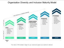 Organisation Diversity And Inclusion Maturity Model