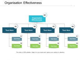 Organisation Effectiveness Ppt Powerpoint Presentation Portfolio Sample Cpb