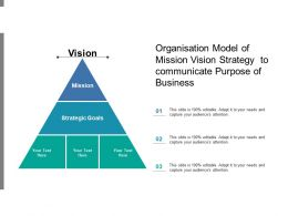 Organisation Model Of Mission Vision Strategy To Communicate Purpose Of Business