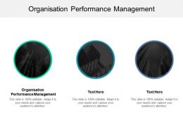Organisation Performance Management Ppt Powerpoint Presentation File Graphics Template Cpb