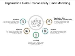 Organisation Roles Responsibility Email Marketing Ppt Powerpoint Presentation Layouts Sample Cpb