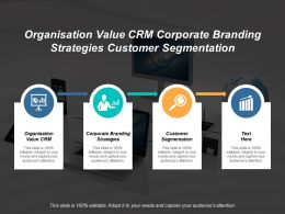 Organisation Value CRM Corporate Branding Strategies Customer Segmentation Cpb