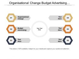 Organisational Change Budget Advertising Investment Projects Venture Capital
