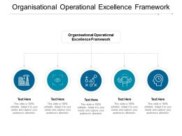 Organisational Operational Excellence Framework Ppt Powerpoint Presentation Infographic Template Example Cpb
