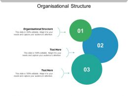 Organisational Structure Ppt Powerpoint Presentation Icon Deck Cpb