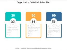 Organization 30 60 90 Sales Plan