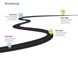 Organization Application Inventory Management Roadmap Editable Audience Capture Ppts Icons