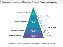Organization Assessment Protective Proactive Awareness Character