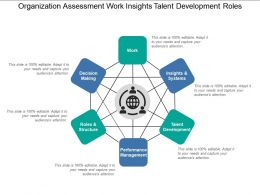 Organization Assessment Work Insights Talent Development Roles