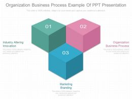 Organization Business Process Example Of Ppt Presentation