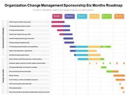 Organization Change Management Sponsorship Six Months Roadmap