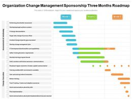 Organization Change Management Sponsorship Three Months Roadmap
