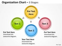 Organization Chart 3 Stages 25