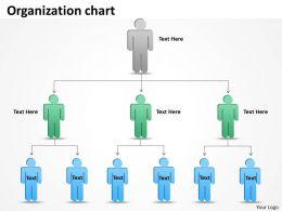 Organization chart 9 steps 28