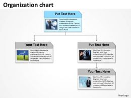 organization_chart__Slide01