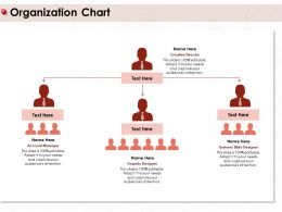 Organization Chart Account M410 Ppt Powerpoint Presentation Icon Example