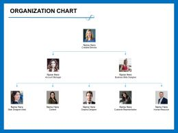 Organization Chart Business M393 Ppt Powerpoint Presentation Model Microsoft