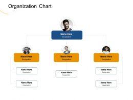 Organization Chart Designation M1970 Ppt Powerpoint Presentation File Styles