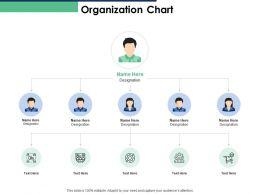 Organization Chart Designation Management N6 Ppt Powerpoint Presentation Images