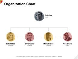 Organization Chart Developer Ppt Powerpoint Presentation File Deck