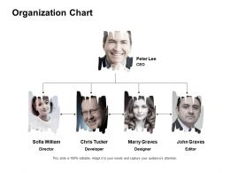 Organization Chart Developer Ppt Powerpoint Presentation Pictures Show