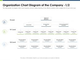 Organization Chart Diagram Of The Company Board Pitch Deck Raise Funding Post IPO Market Ppt Grid