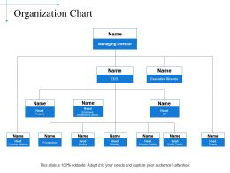Organization Chart Example Of Ppt