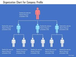 Organization Chart For Company Profile Flat Powerpoint Design