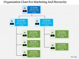 Organization Chart For Marketing And Hierarchy Flat Powerpoint Design
