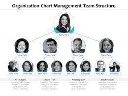Organization Chart Management Team Structure Infographic Template