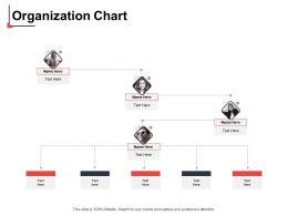Organization Chart N26 Ppt Powerpoint Presentation Outline Slide Download