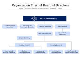 Organization Chart Of Board Of Directors