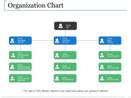 Organization Chart Ppt Diagrams