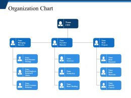 Organization Chart Ppt Examples