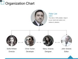 Organization Chart Ppt Guide