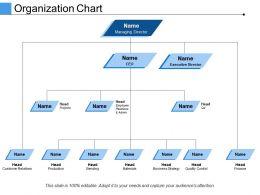 Organization Chart Ppt Infographics