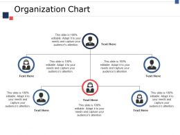 Organization Chart Ppt Infographics Maker