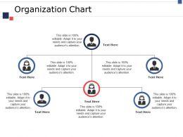 Organization Chart Ppt Infographics Maker