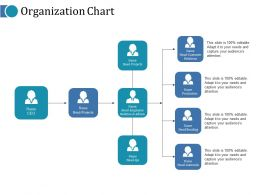Organization Chart Ppt Infographics Pictures