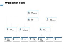 Organization Chart Ppt Powerpoint Presentation Gallery Diagrams