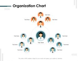Organization Chart Ppt Powerpoint Presentation Pictures Designs Download