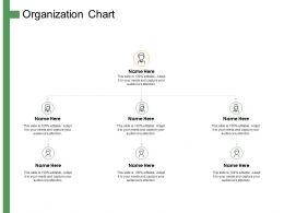 Organization Chart Ppt Powerpoint Presentation Summary Infographics