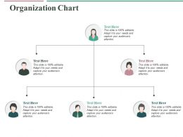Organization Chart Ppt Professional Master Slide